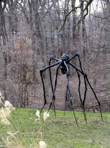 Spider Sculpture Park
